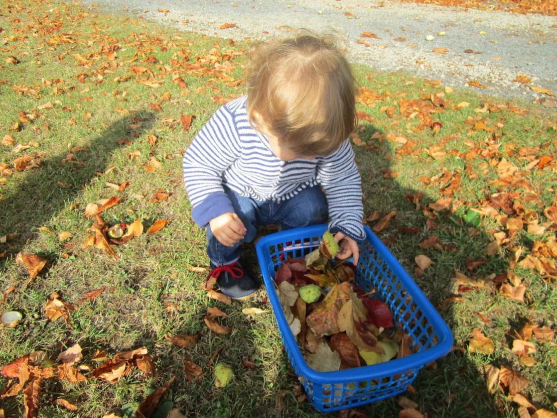 cueillette d'automne à la crèche de saint-saulve