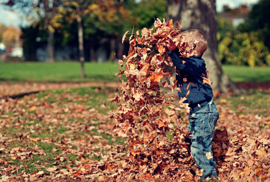 enfant jouant avec les feuilles d'automne