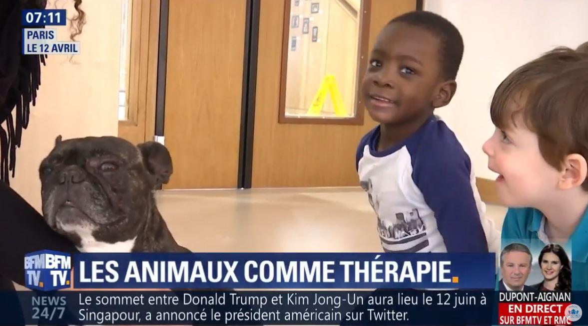 vidéo médiation animale crèche Montparnasse